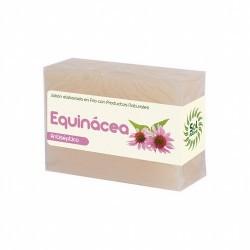 Más información JABON DE EQUINACEA 100 G SOL NATURAL    Ingredientes: Cocos Nucifera Oil, Aqua , Sodium Hydroxide, Potassi
