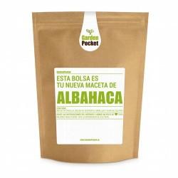 Abahaca (Ocimum basilicum ). La albahaca se utiliza como condimento y aromatizante en muchos países. El sabor de las hojas fres