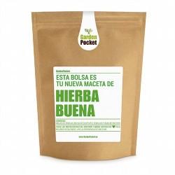 Hierbabuena (Mentha spicata).Una planta ideal en la cocina, por su sabor intenso y fresco como condimento a muchos platos, acom
