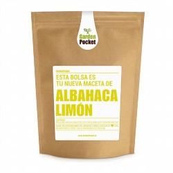 Es ampliamente utilizada en la cocina de Indonesia por su fuerte olor a limón. La planta se cultiva en todo el norte de África