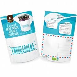 ¿Qué contiene?: sustrato bio, semillas ecológicas de col lombarda, mezclador e instrucciones de cómo cultivar. En 10-14 días p