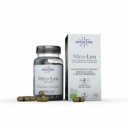 Mico Leo Extracto de Melena de león Contribuye al funcionamiento normal del sistema nervioso y al mantenimiento de las mucosas