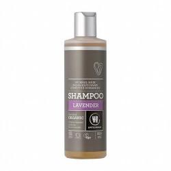 Champú de lavanda para todo tipo de cabello. Cuida el cabello con la efectiva decocción de flores y aceites esenciales de lavan
