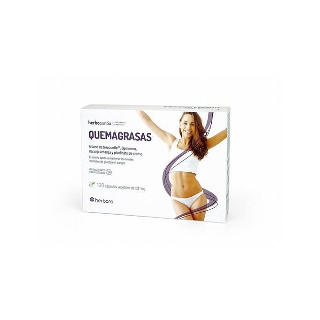 Ingredientes Por 4 cápsulas: Neopuntia® (Opuntia ficus-indica (L.) Mill) 600 mg, ES Gymnema (Gymnema sylvestris) 400 mg, ES N