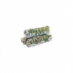 Utilizada en hechizos de sanación, protección, limpieza áurica y abundancia, la salvia tiene un alto poder mágico. Por su pod