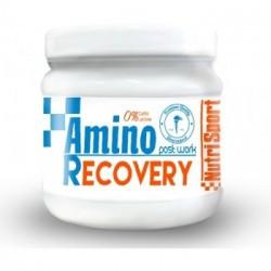 NS.AMINO RECOVERY 260 Grs