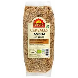 Avena en grano  La avena es uno de los Cereales más ricos en Proteínas, grasas e hidratos de Carbono.  La Avena Contiene M
