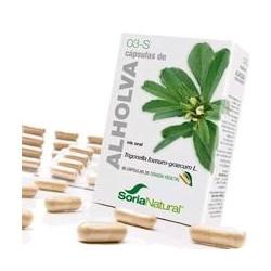 * Trigonella foenum graecum L. ( semillas).  Trigonelina.............12 mg; ( 2 mg / cápsula).