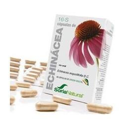 *Echinacea angustifolia D.C. (raíz).  Derivados caféicos..................0,9 mg; ( 0,15 mg / cápsula).  Flavonoides ( ácid