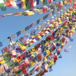 Banderas de oración divinidades 14x19cm Largo total 500 cm aprox. 25 banderas Made in : Nepal Llamadas lungta o caballo de v